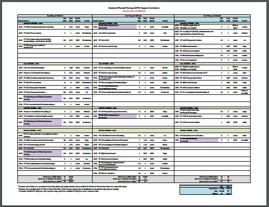 DPT Curriculum